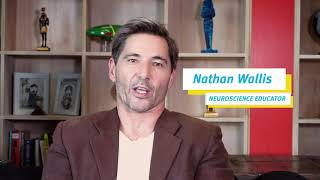 Nathan Wallis Neuroscience Educator