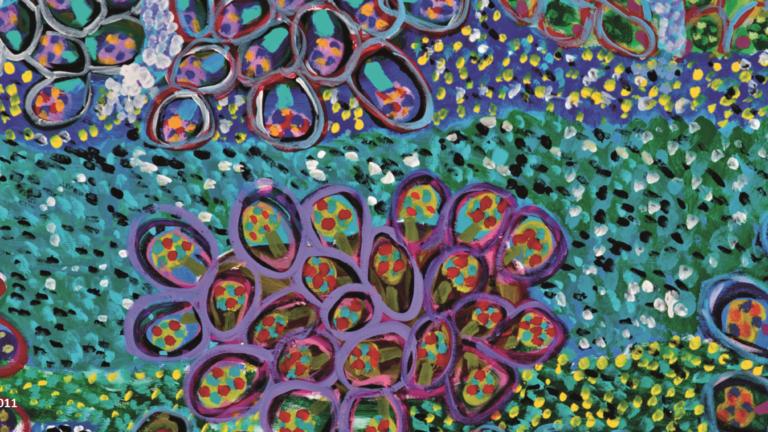 Coral Beds © Josiah Omeenyo 2011